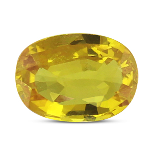 Yellow Sapphire - BYS 6534 (Origin - Thailand) Limited -Quality - MyRatna
