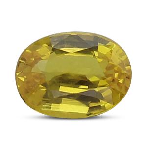 Yellow Sapphire - BYS 6542 (Origin - Thailand) Limited -Quality - MyRatna