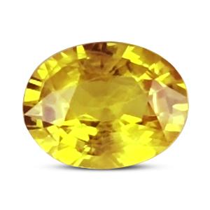 Yellow Sapphire - BYS 6633 (Origin - Thailand) Prime - Quality - MyRatna