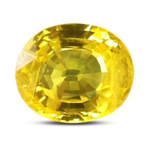 Yellow Sapphire - BYS 6693 (Origin - Thailand) Limited - Quality - MyRatna