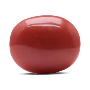 Red Coral - CC 5502 (Origin - Italy) Rare - Quality - MyRatna