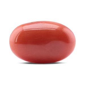 Red Coral - CC 5623 (Origin - Italy) Rare - Quality - MyRatna
