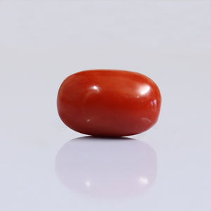 Red Coral - CC 5647 (Origin - Italy) Limited - Quality - MyRatna