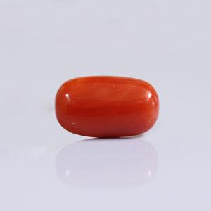Red Coral - CC 5654 (Origin - Italy) Rare - Quality - MyRatna