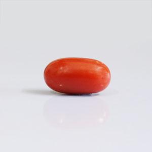 Red Coral - CC 5681 (Origin - Italy) Rare - Quality - MyRatna