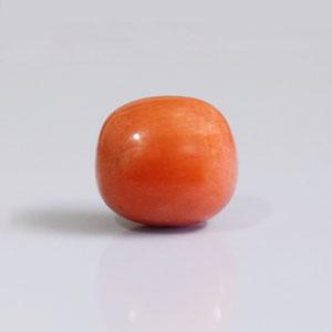 Red Coral - CC 5691 (Origin - Italy) Prime - Quality - MyRatna