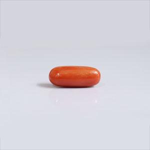 Red Coral - CC 5694 (Origin - Italy) Prime - Quality - MyRatna