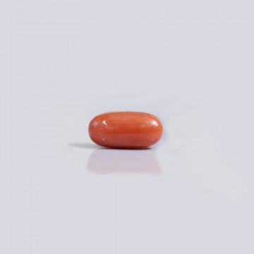 Red Coral - CC 5710 (Origin - Italy) Rare - Quality - MyRatna