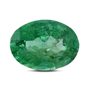 Emerald - EMD 9279 (Origin - Zambia) Prime - Quality - MyRatna