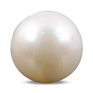 Pearl - SSP 8502 (Origin - South Sea) Prime - Quality - MyRatna