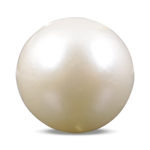 Pearl - SSP 8505 (Origin - South Sea) Prime - Quality - MyRatna