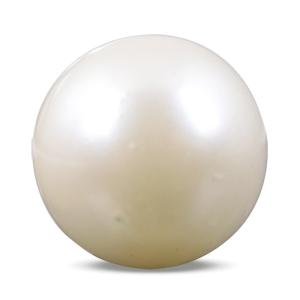 Pearl - SSP 8506 (Origin - South Sea) Prime - Quality - MyRatna