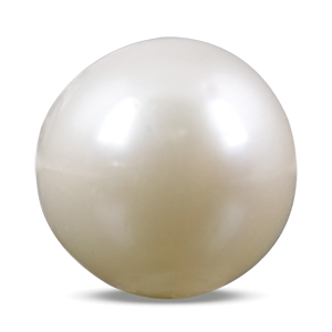 Pearl - SSP 8511 (Origin - South Sea) Prime - Quality - MyRatna