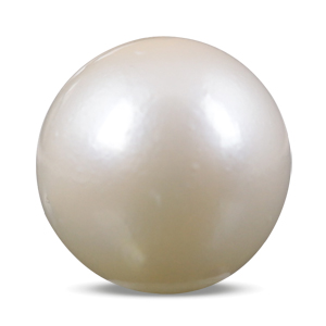 Pearl - SSP 8512 (Origin - South Sea) Prime - Quality - MyRatna