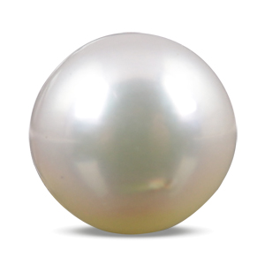 Pearl - SSP 8557 (Origin - South Sea) Prime - Quality - MyRatna