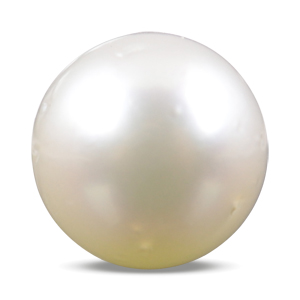 Pearl - SSP 8558 (Origin - South Sea) Prime - Quality - MyRatna