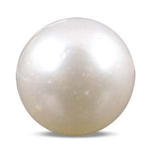 Pearl - SSP 8559 (Origin - South Sea) Prime - Quality - MyRatna