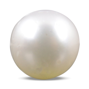 Pearl - SSP 8563 (Origin - South Sea) Prime - Quality - MyRatna