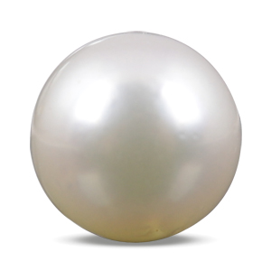 Pearl - SSP 8565 (Origin - South Sea) Prime - Quality - MyRatna