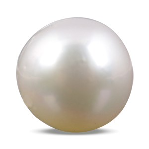 Pearl - SSP 8567 (Origin - South Sea) Prime - Quality - MyRatna