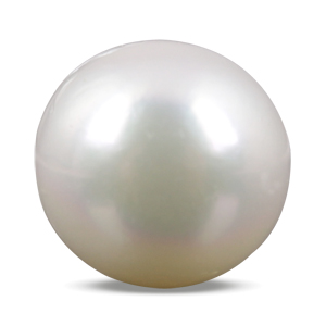 Pearl - SSP 8569 (Origin - South Sea) Prime - Quality - MyRatna