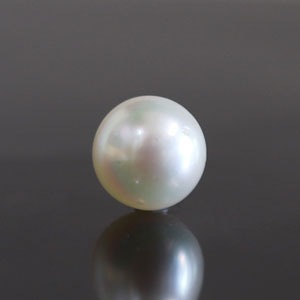 Pearl - SSP 8584 (Origin - South Sea) Fine - Quality - MyRatna