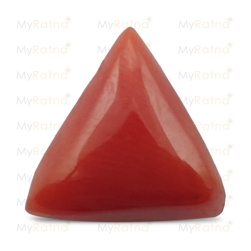 Red Coral - TC 5021 (Origin - Italy) Limited - Quality - MyRatna