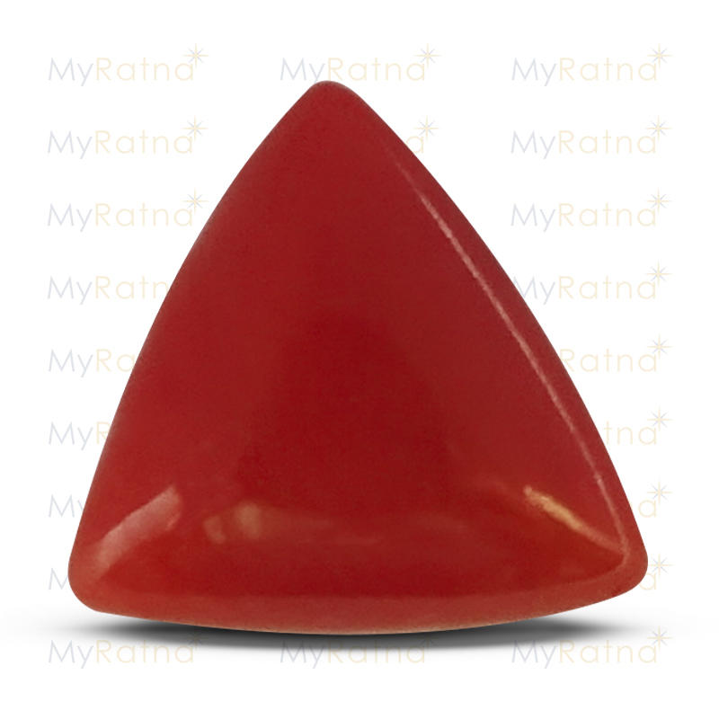Red Coral - TC 5056 (Origin - Italy) Limited - Quality - MyRatna