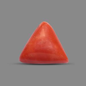 Red Coral - TC 5169 (Origin - Italy) Prime - Quality - MyRatna