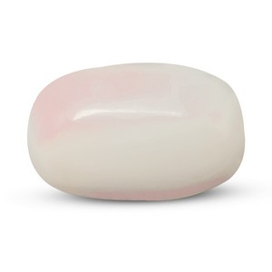 White Coral - WC 7501 Prime - Quality - MyRatna