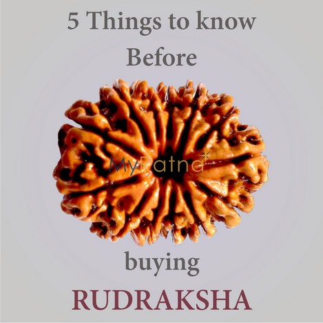 5-things-to-know-before-buying rudraksha