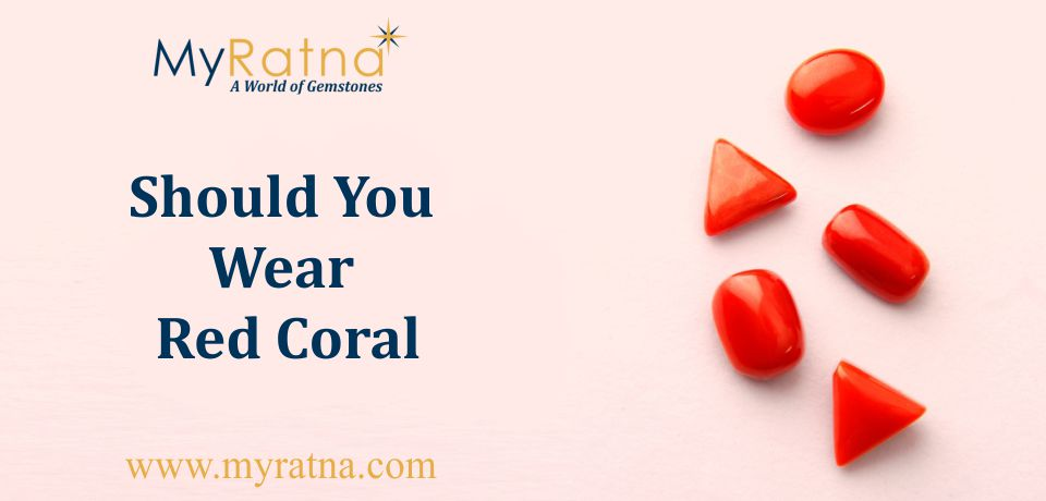 Who Should Wear Red Coral