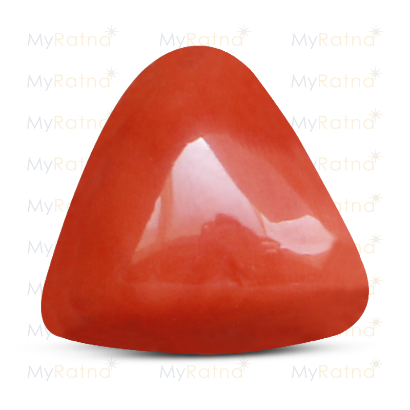 Certified Natural Red Coral 16.63 Ct (Italy) - Limited - MyRatna